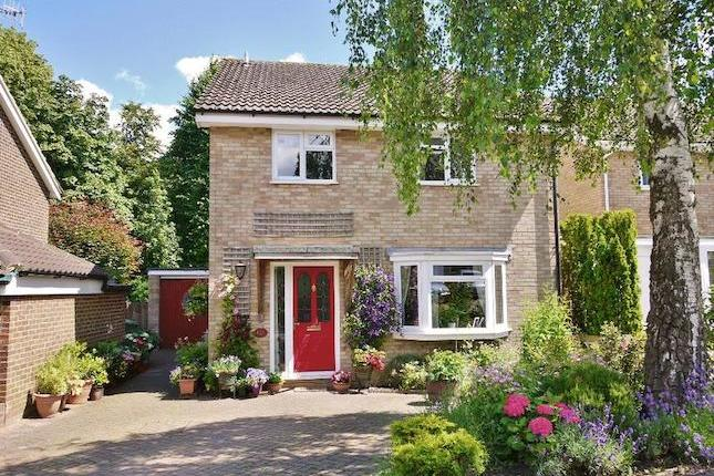 Beautifully modernised and presented. A detached 4 bedroom family home, with garage, driveway parking and attractive gardens, set on a popular road in the heart of the village. The accommodation is well-proportioned and finished to a high standard, comprising: Entrance hall, spacious 18'2 x 13'1...