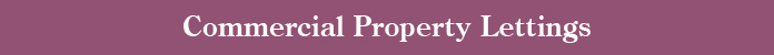 Commercial Property Lettings