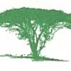 Land for sale - Mtini Estate