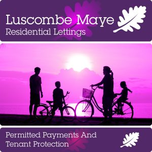 Permitted Payments And Tenant Protection Information