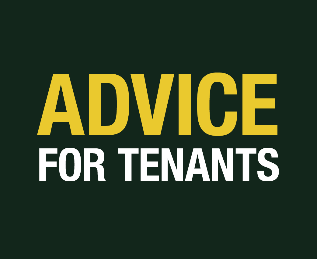 advice-for-tenants-banners-500x408
