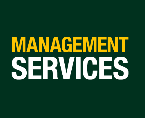 managment-services-banners-500x408