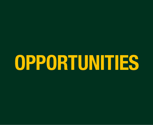 opportunities-banners-500x408